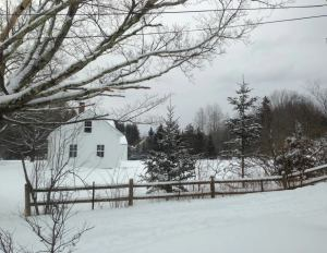 The winter landscape of Vermont, which has taught me to keep awake and see signs of new life in the most unlikely places.